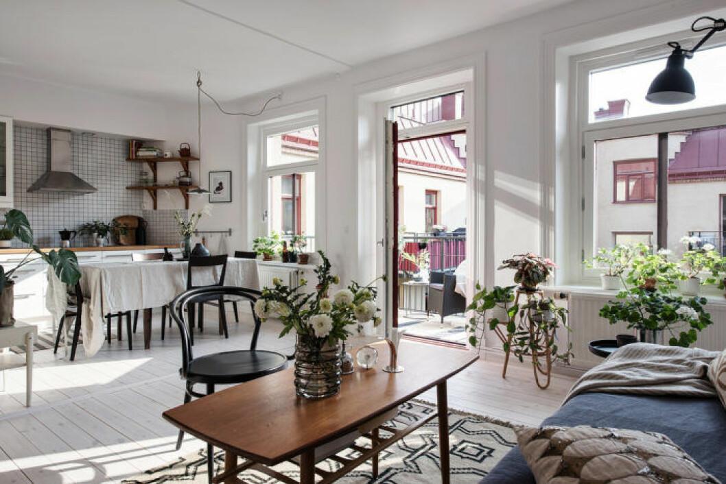 Lägenhet med öppenplanlösning där kök och vardagsrum syns
