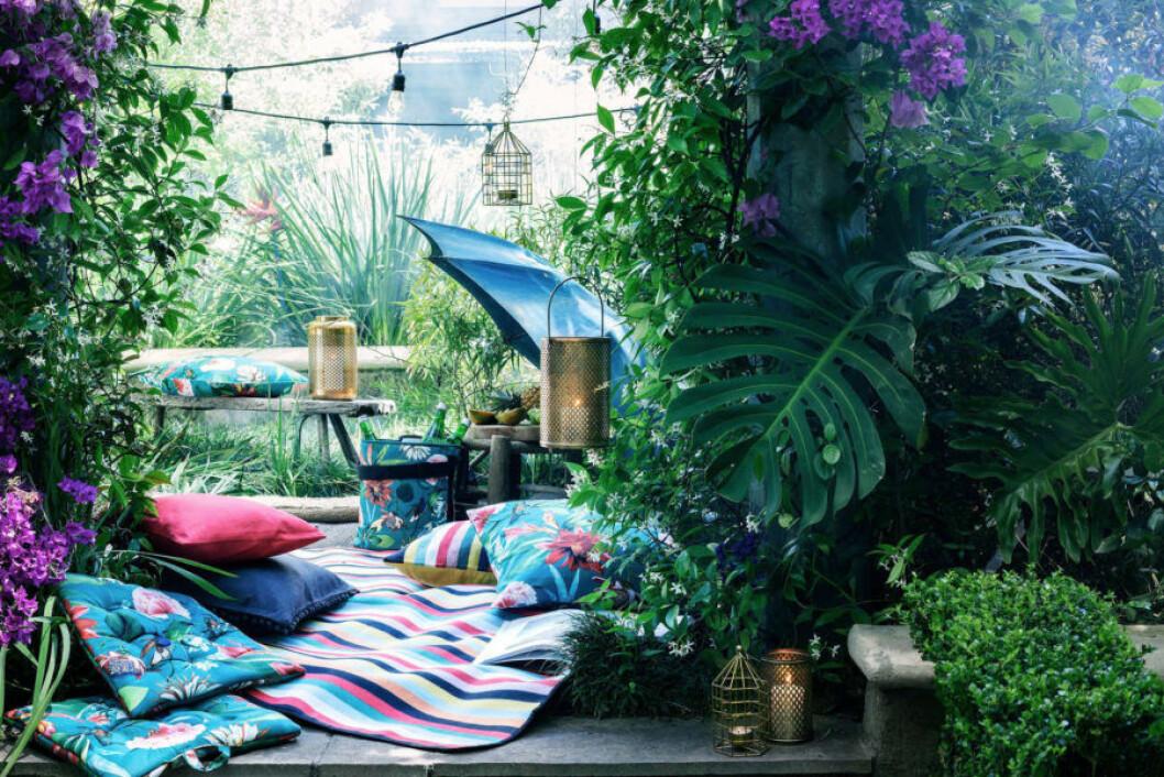 Pyntad trädgård med filtar och kuddar