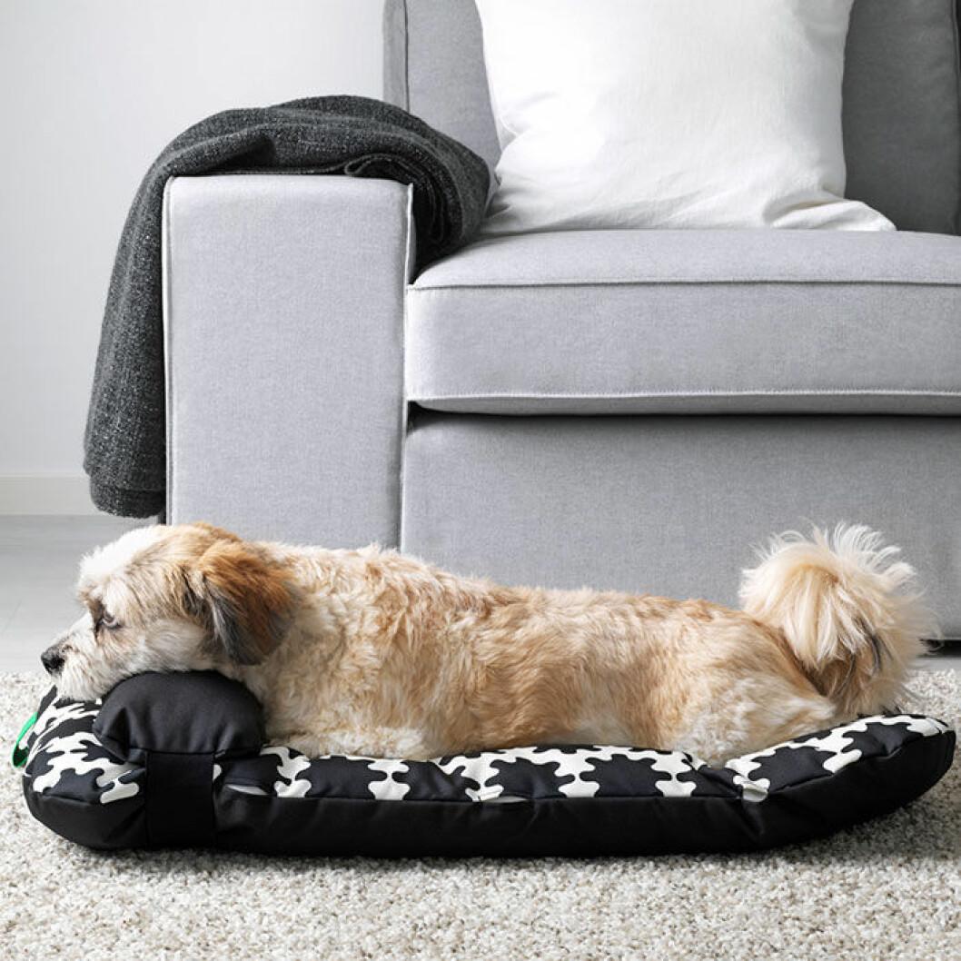 Kollektionen innehåller även möbler till djur.
