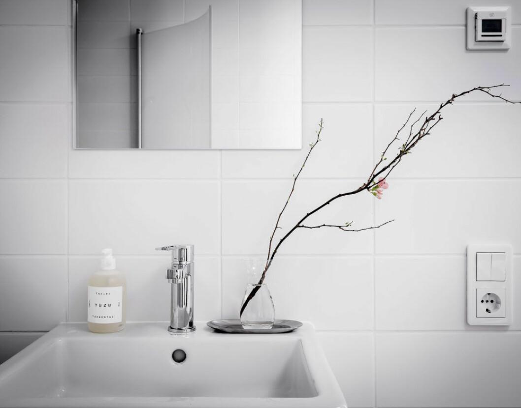 Magnoliakvist i en enkel vas i badrummet
