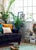 Fönster med djup fönsternisch för tavlor och växter