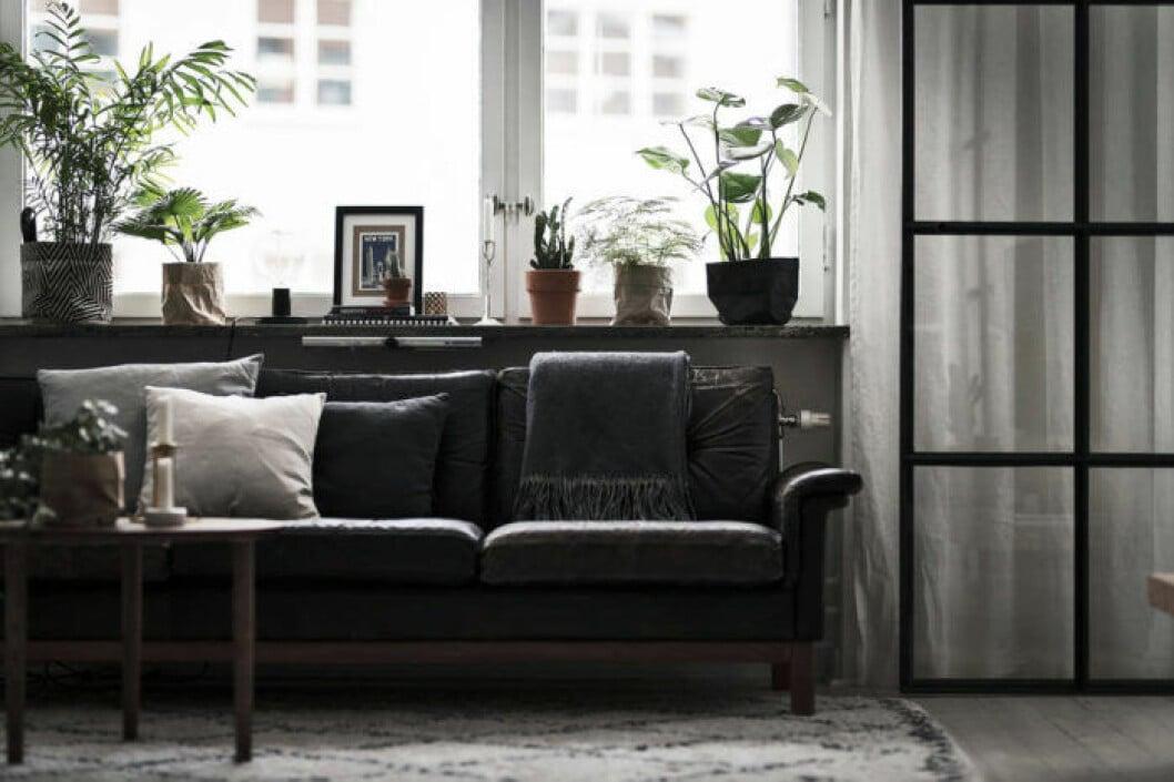 Detaljbild på mörk soffa i läder