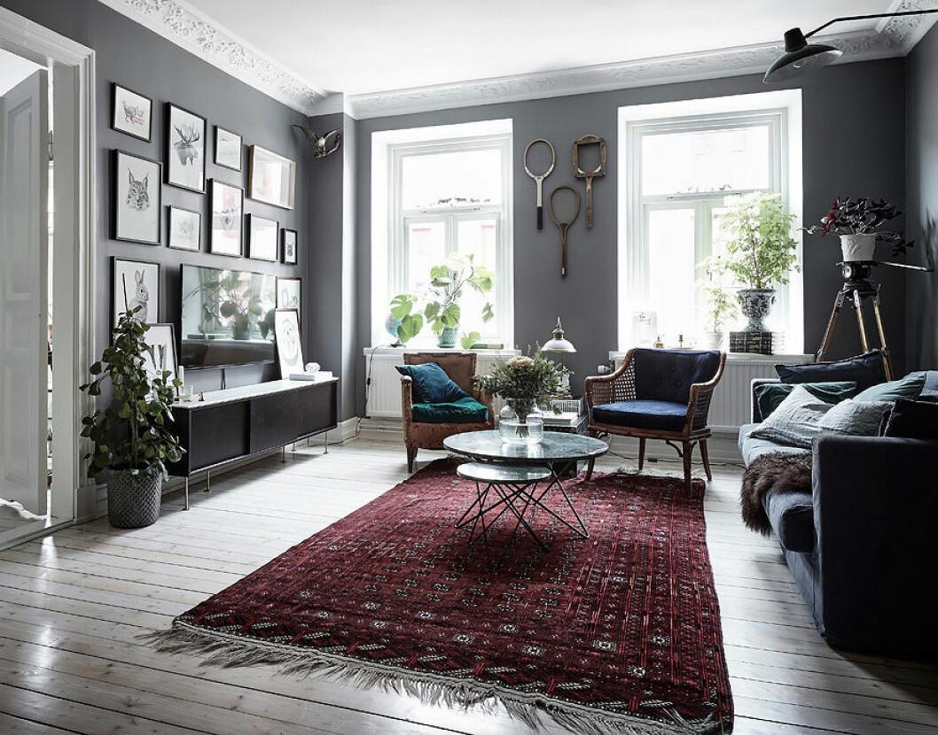 Vardagsrum med gråa väggar där en röd matta blir färgklicken i rummet