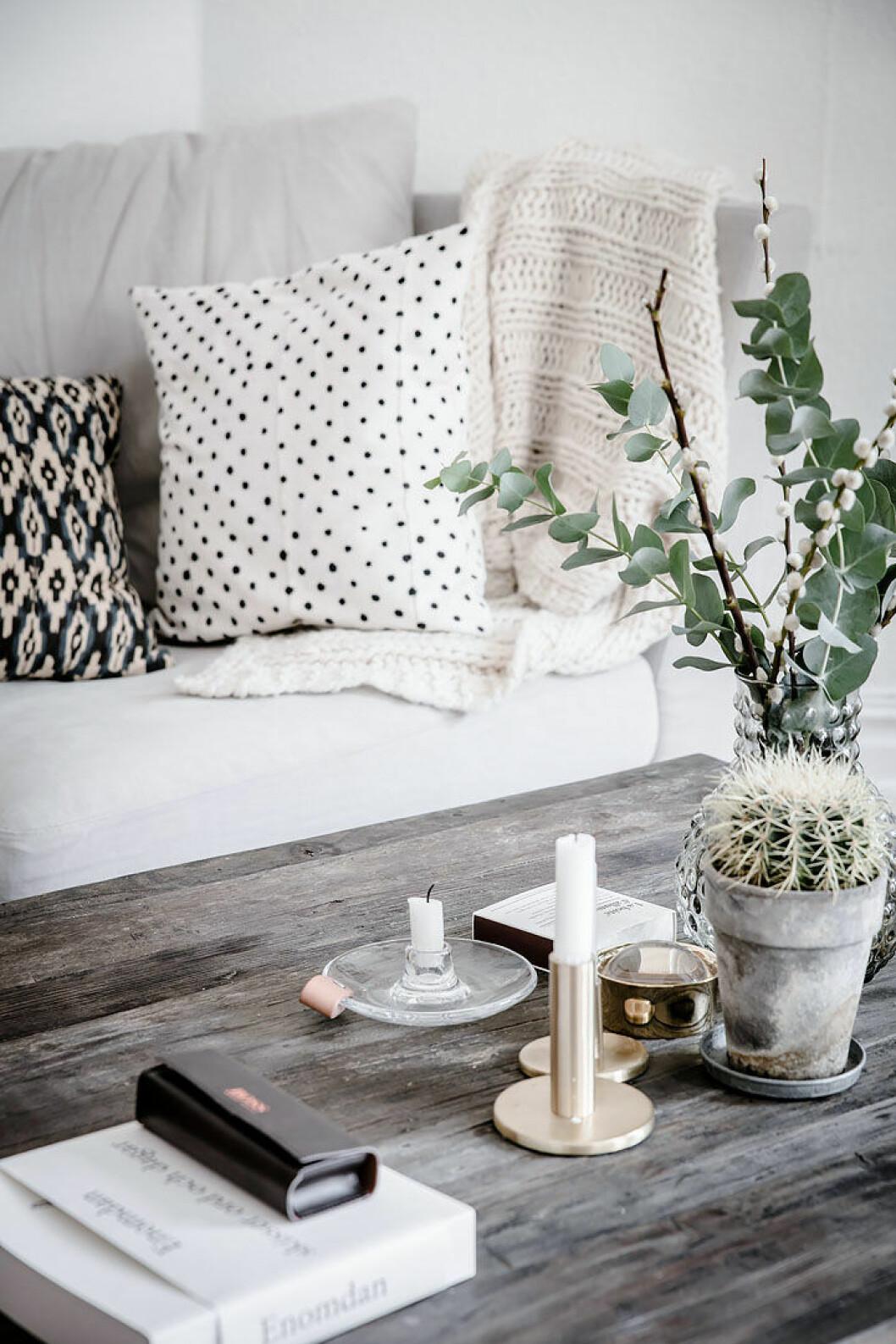 Vide och eukalyptuskvistar i en vas på ett vardagsrumsbord