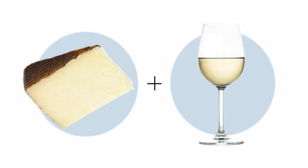 Ost och vinkombination Manchego och Sauvignon blanc