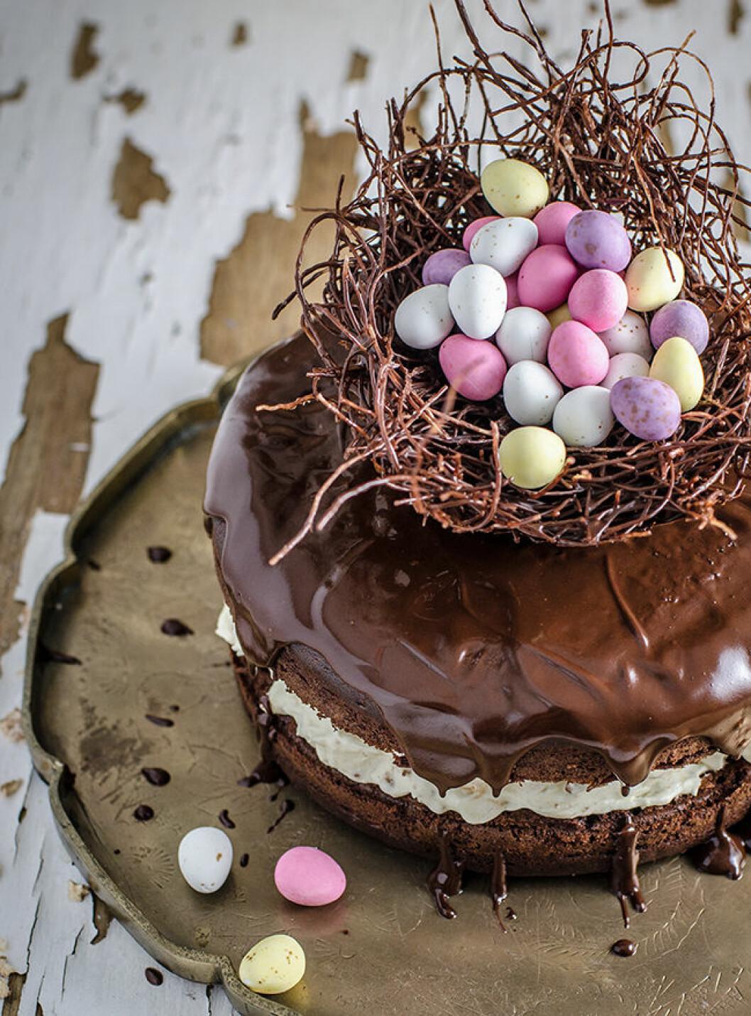 Tårta med ett fågelbo av choklad.
