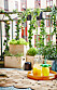Sommarbalkong med växter, dryck och matta