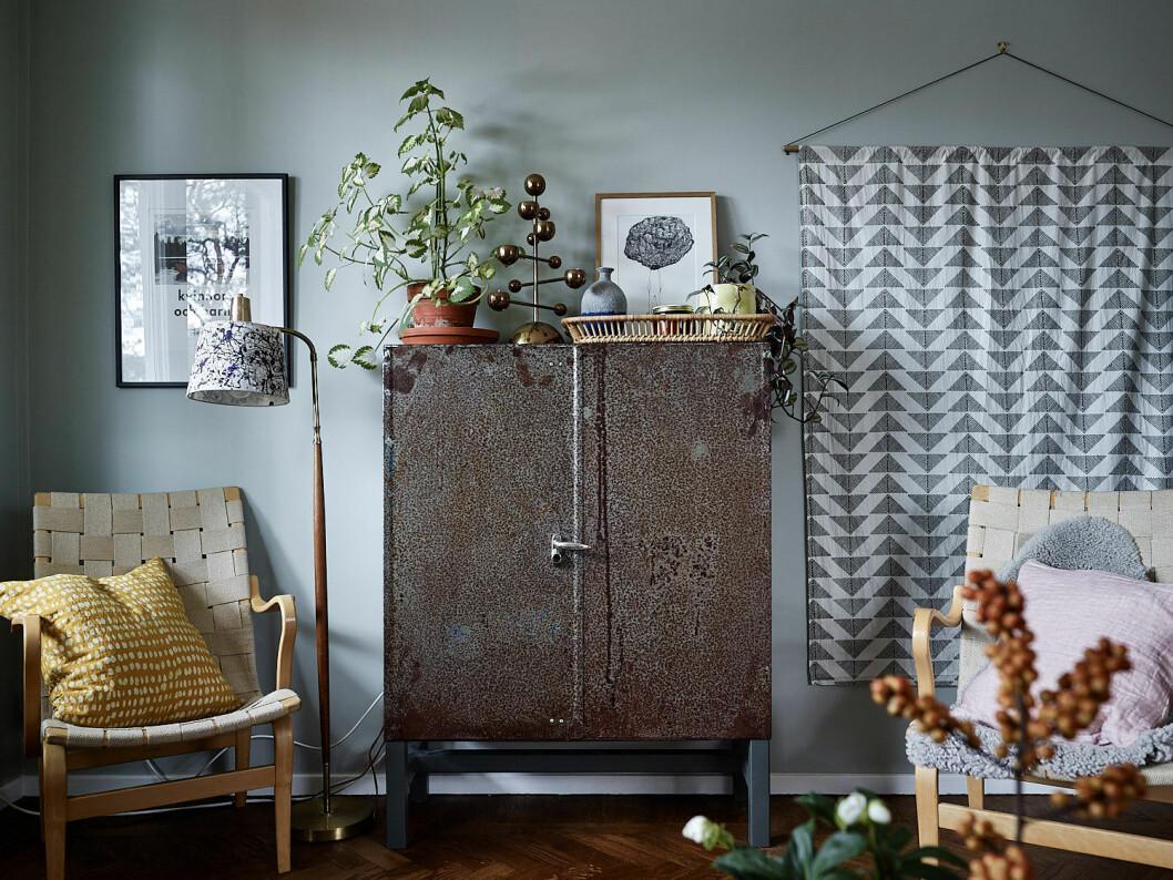 Skåp med växter på, vardagsrum med målad vägg.