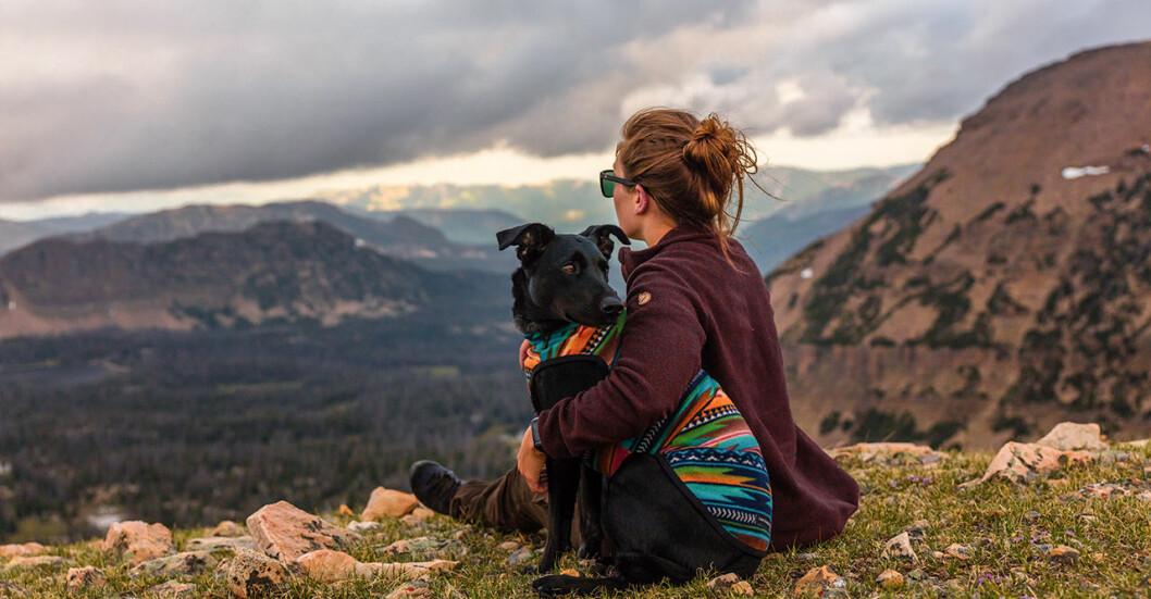 resetips för en semester med hund
