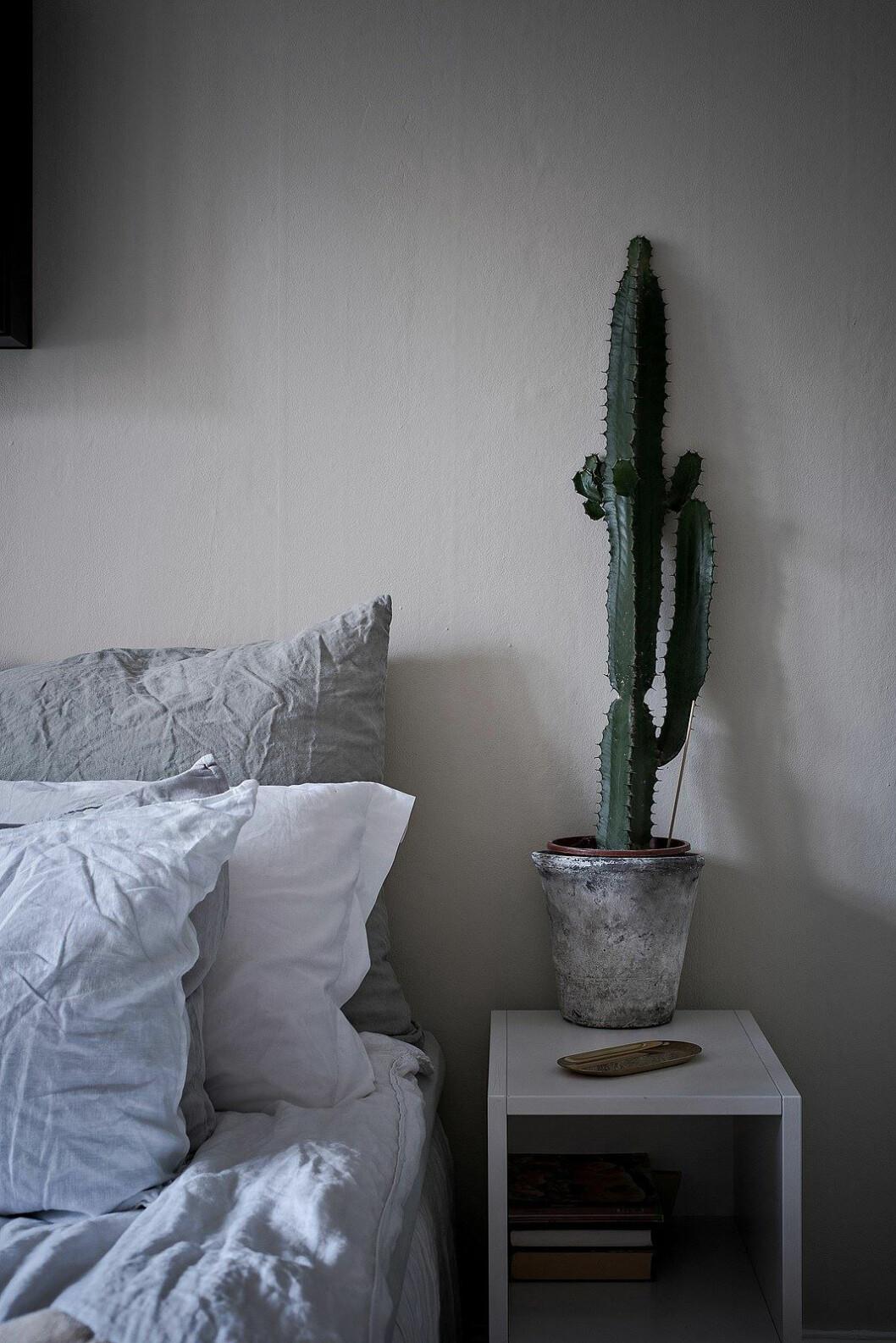 Örngott i linne, stor kaktus
