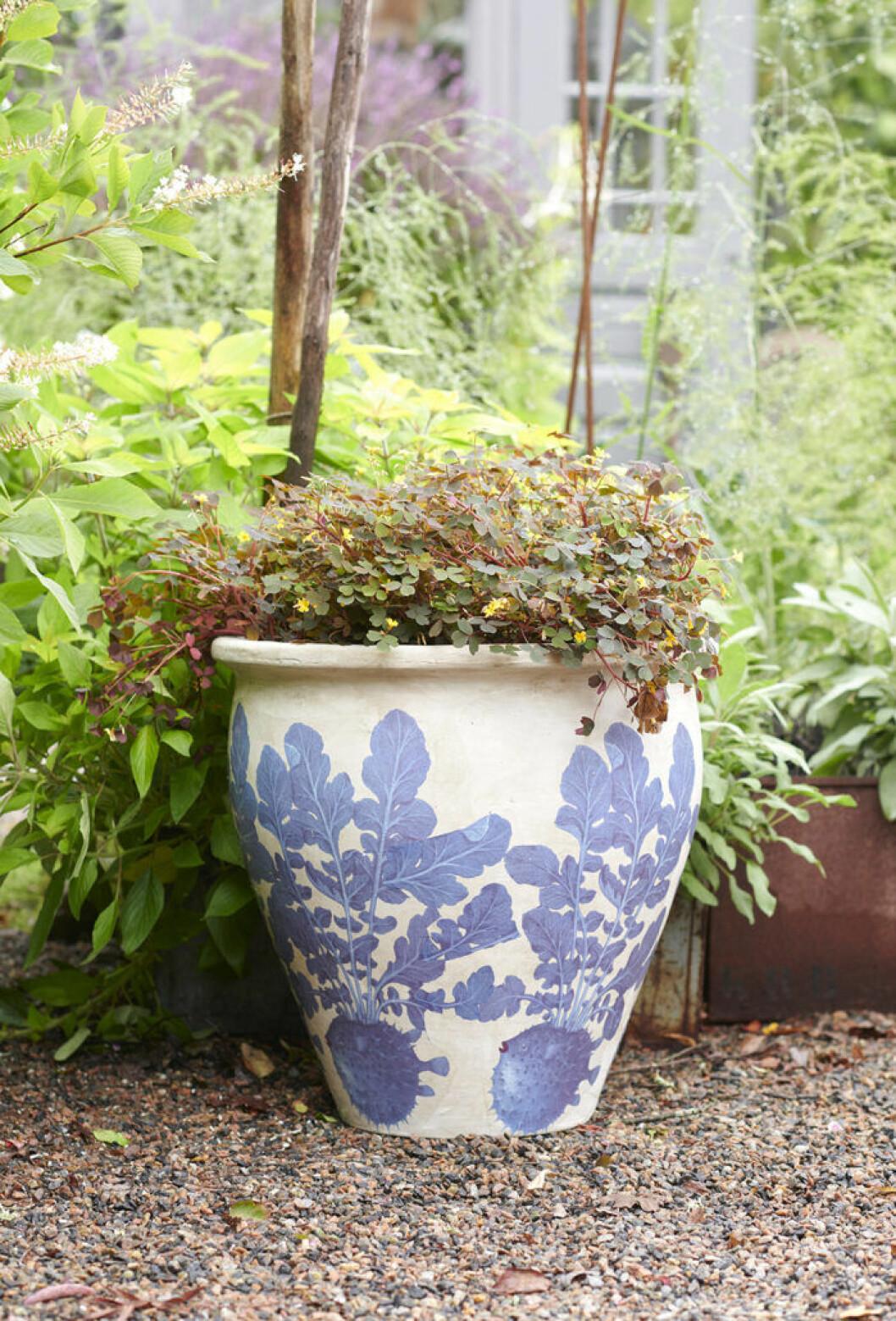 Utomhuskruka med blå mönster från Ellos Homes samarbete med Lisa Bengtsson.