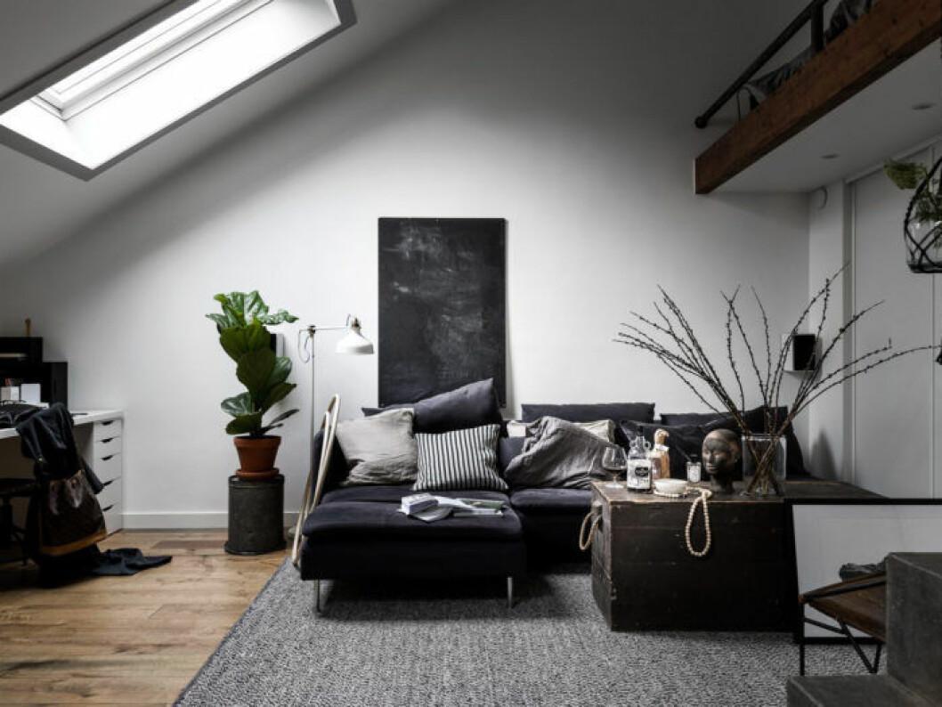 Vardagsrum med snedtak