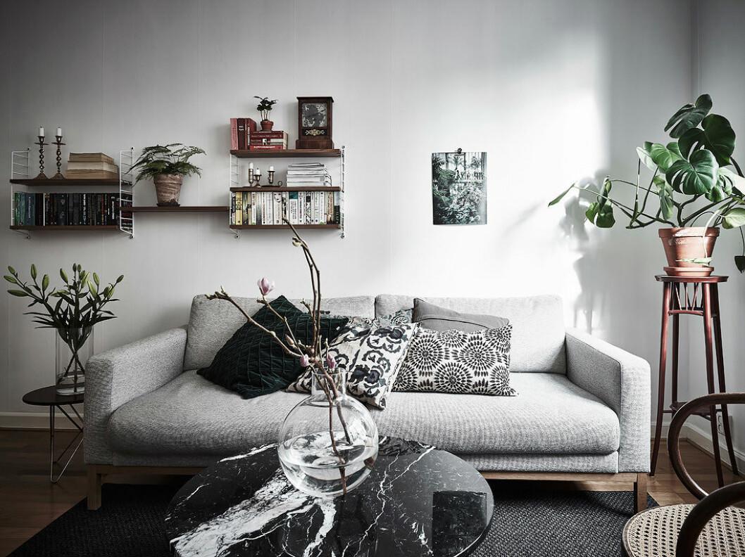 Vardagsrum med växter på bord och golv