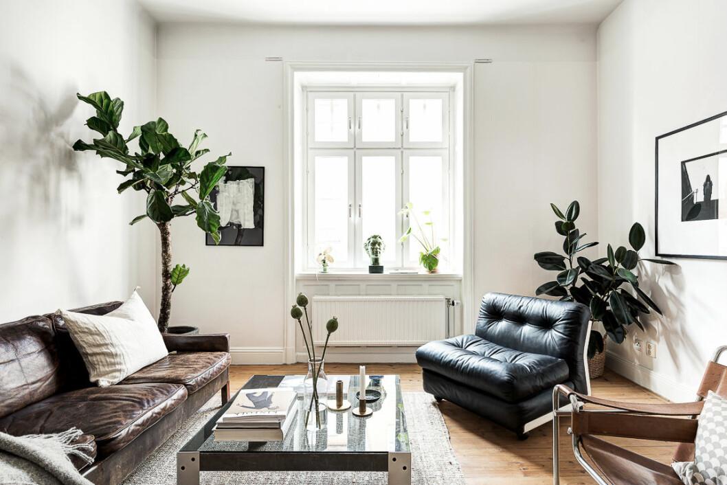 Placera växter i hörn där det är svårt att möblera