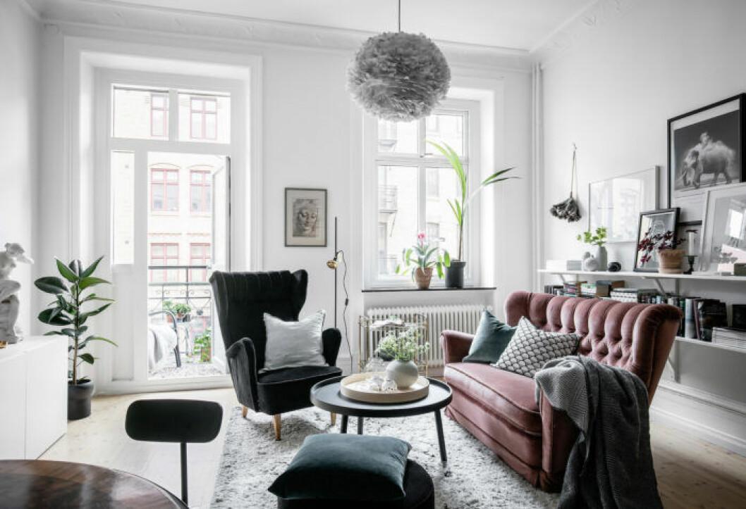 Vardagsrum med en rosa sammetssoffa som färgklick