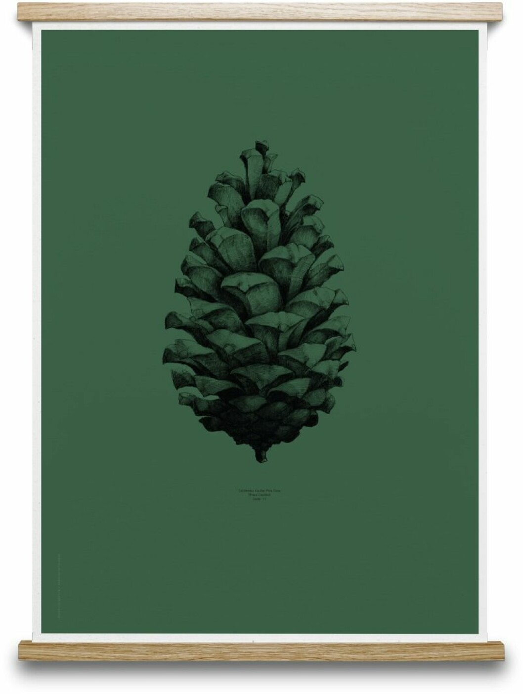 06016_FUWL_Pinecone_dark_Forest_Green-802x1062