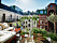Scandinavian summer balcony with green plants and vegetable plants.