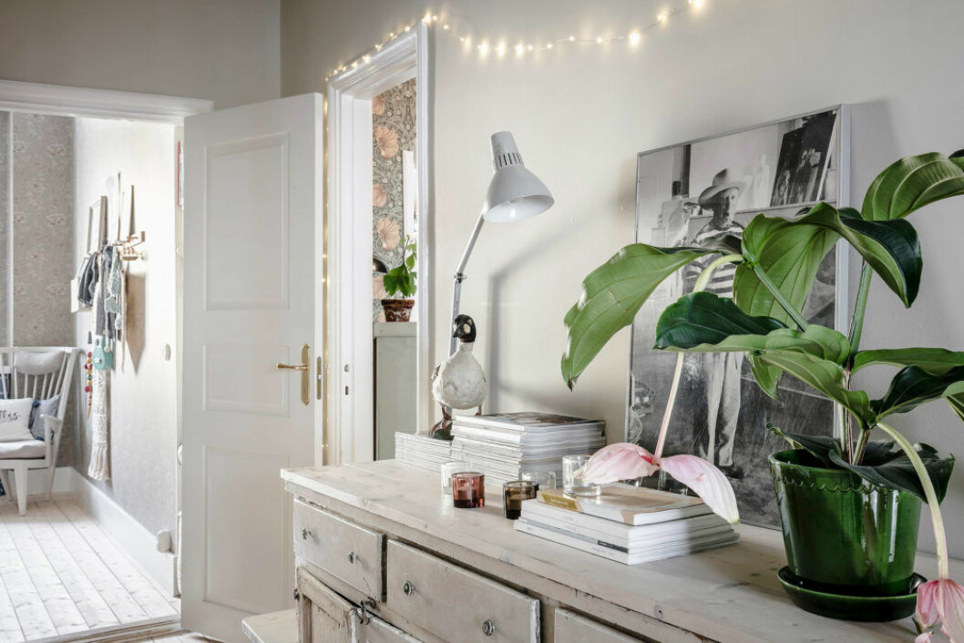 Scandinavian interior inspiration and ideas with light painted walls and green plants.