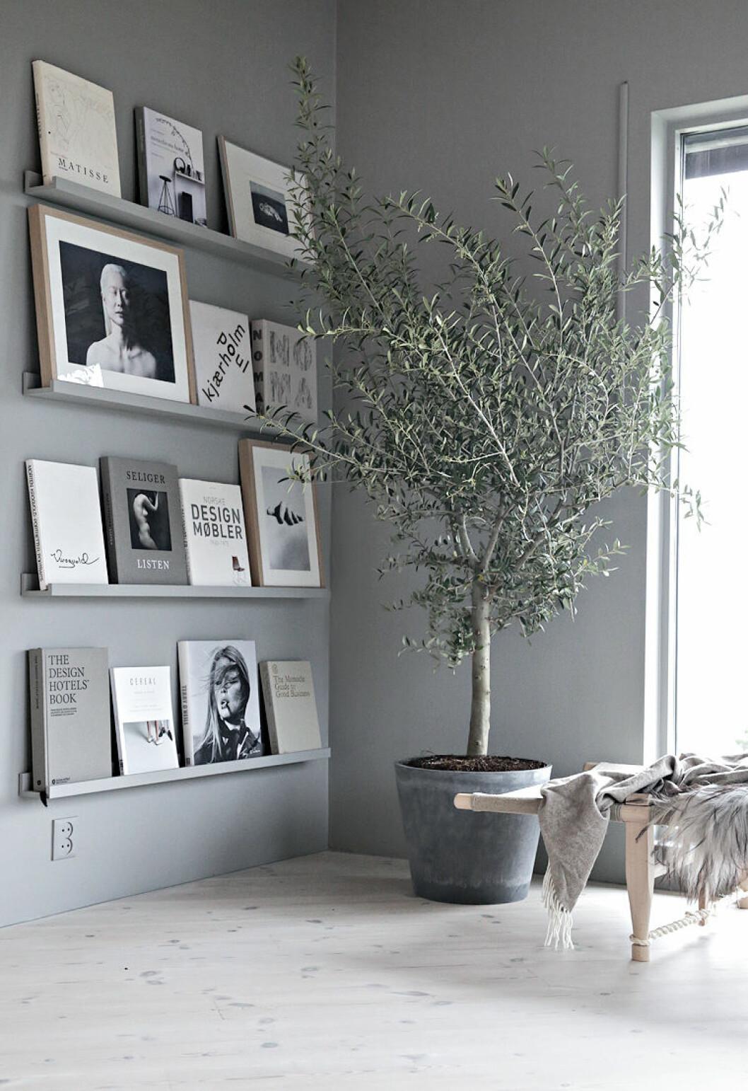 Inmålade hyllplan i grått