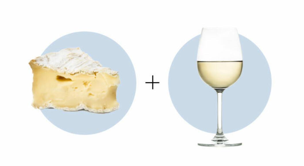Ost och vinkombination brie och riesling