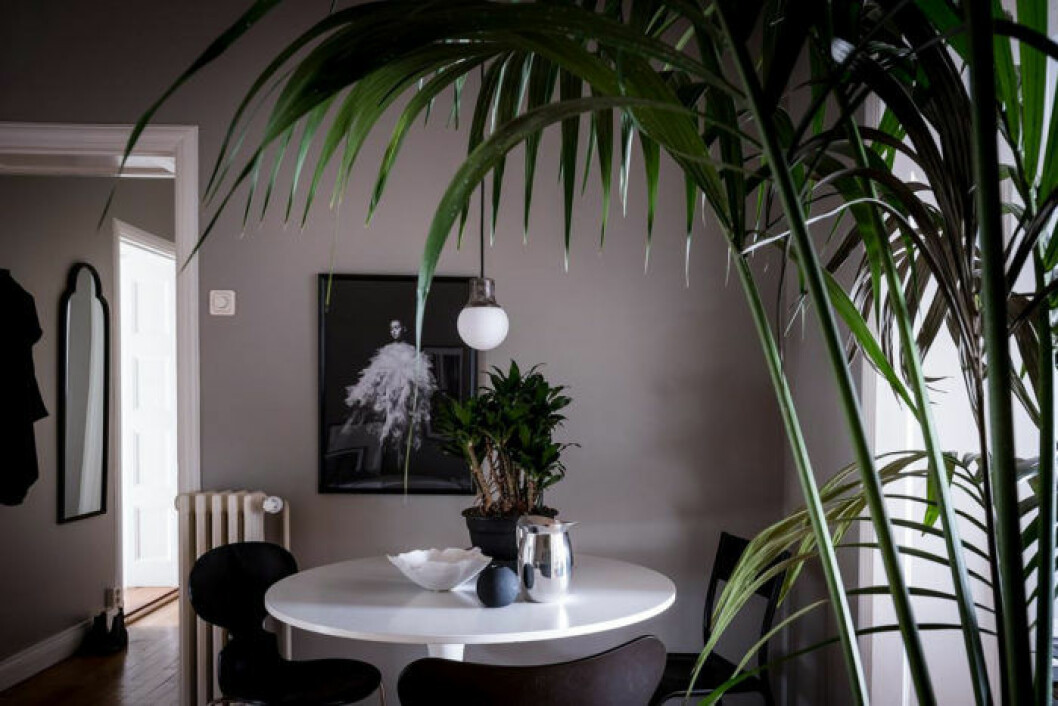 Scandinavian decoration and ideas. Greige painted wall.