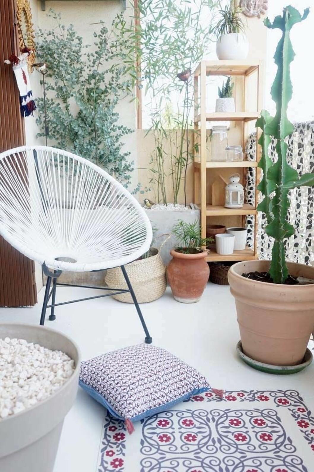 09. balkong med kaktus.