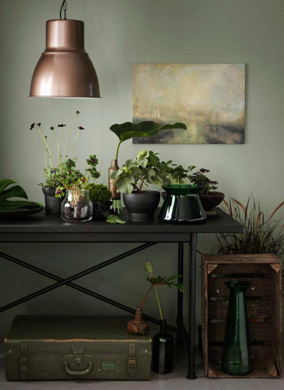 Målning och växter