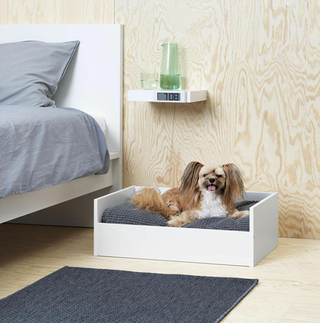 Säng till djur från Ikea.