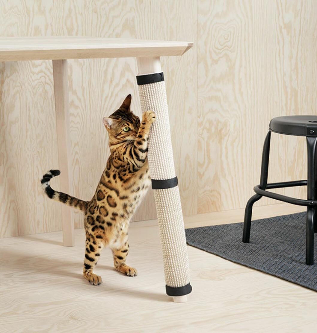 Kollektionen är designad av både djurälskare och veterinärer.