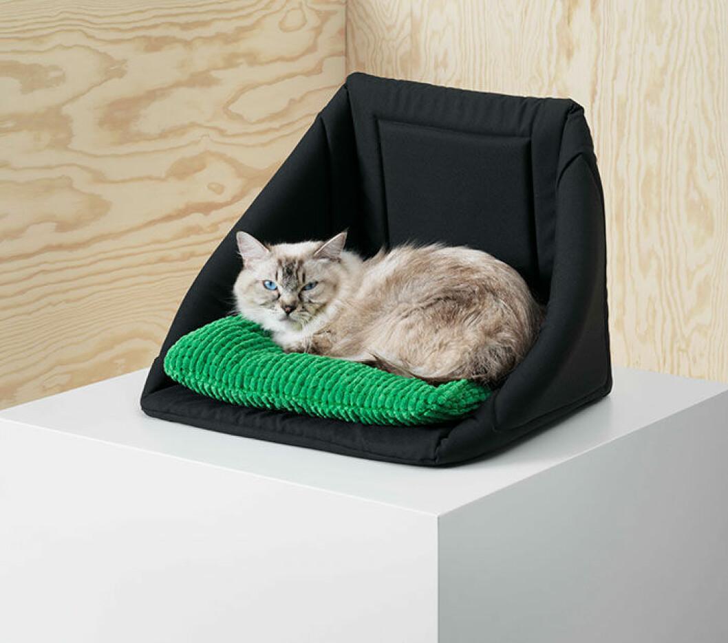 Säng för katt.