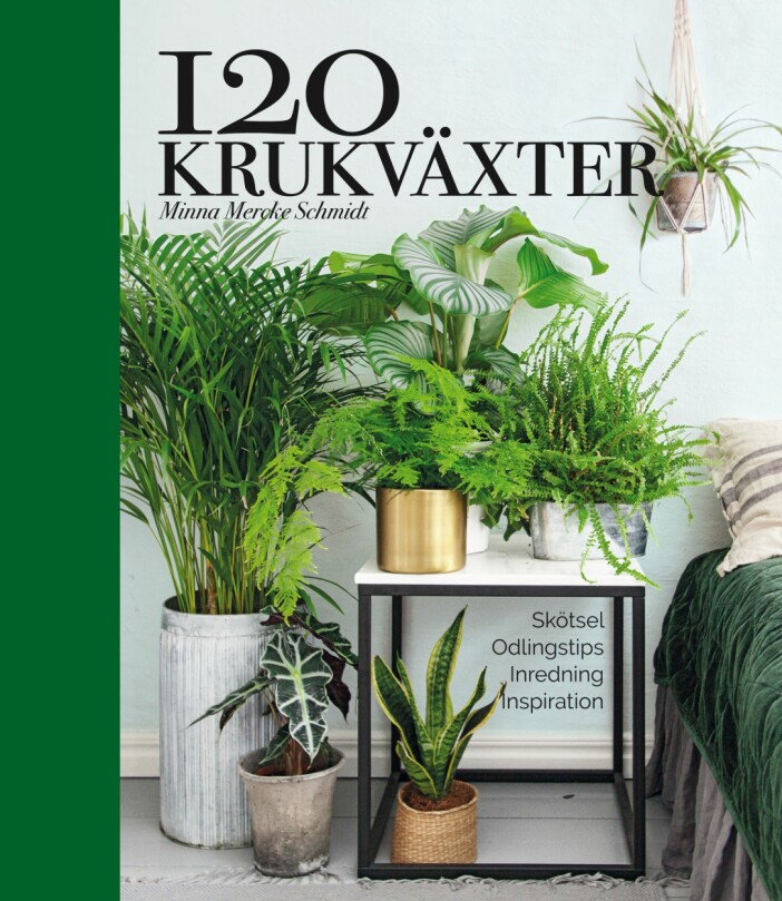 120 krukväxter bok för grönväxter hemma