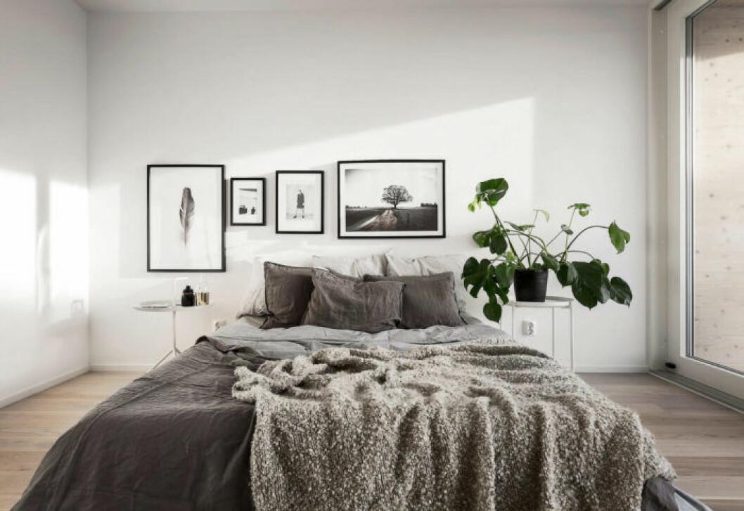 Sovrum med tavelvägg och sängkläder i linne. Monstera.