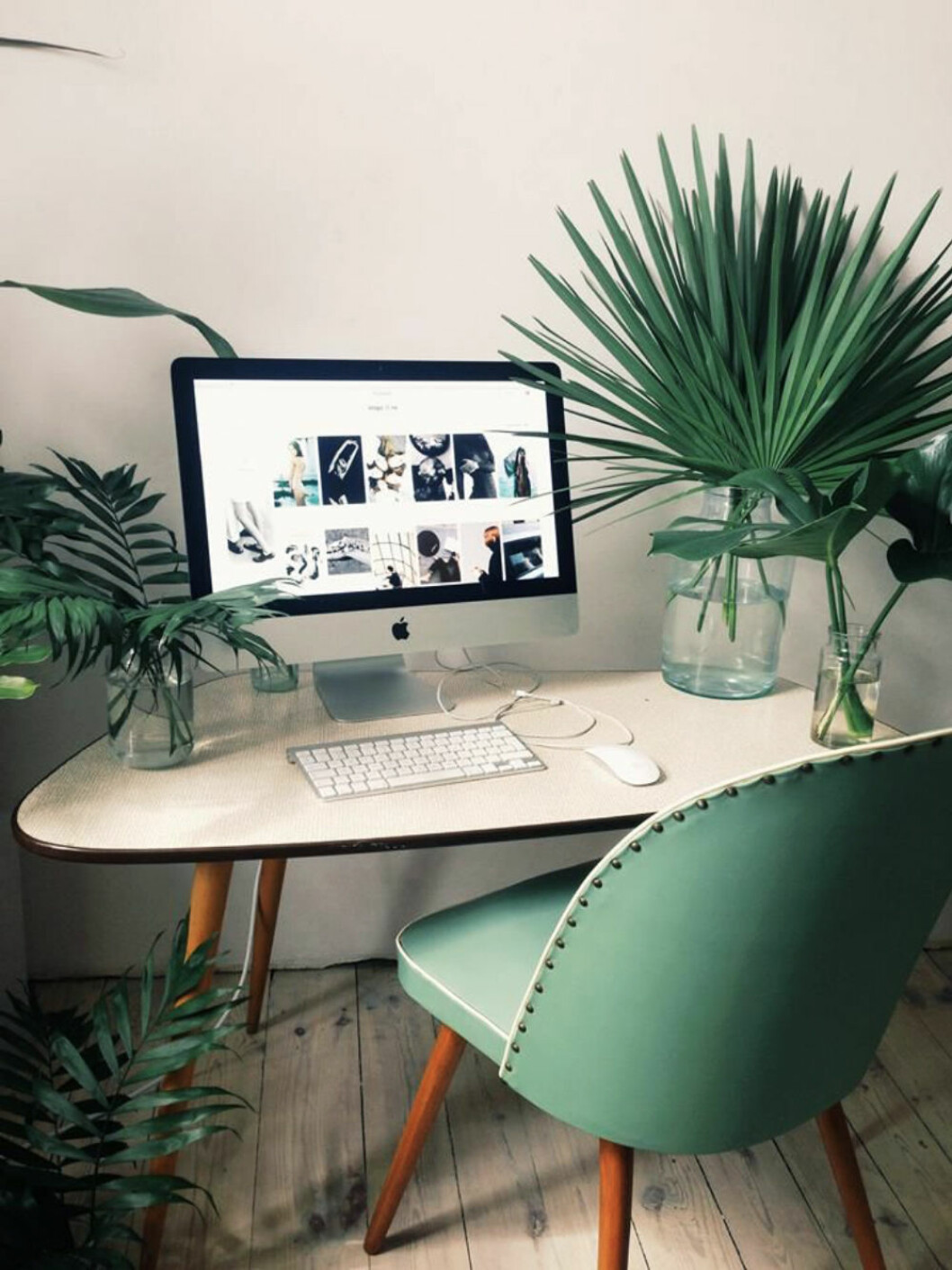green-plants-home-office-work-study-space