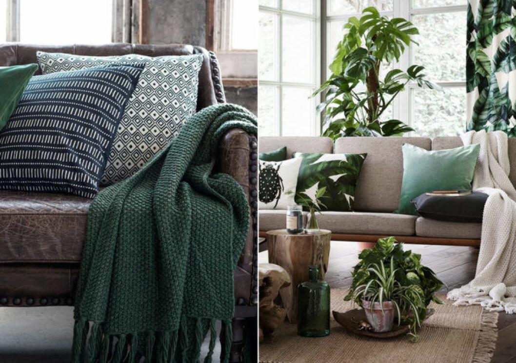 Grön filt, gröna kuddar