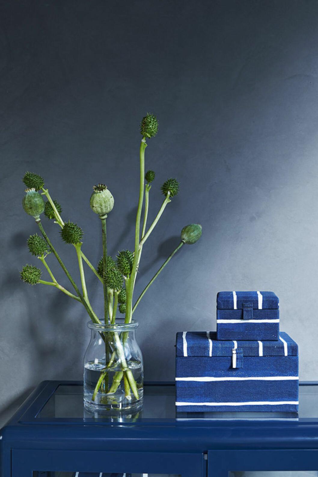Ikeas kollektion Innehållsrik, växt och lådor.