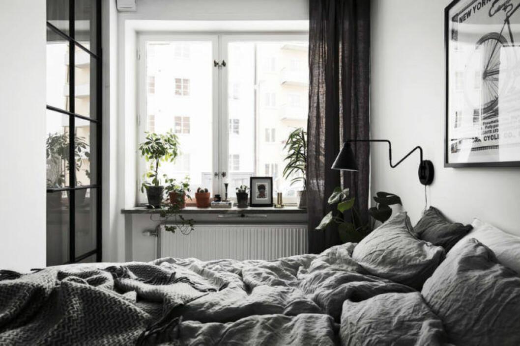 Annan vy från sovrummet mot fönstret och glasdörren i industristil