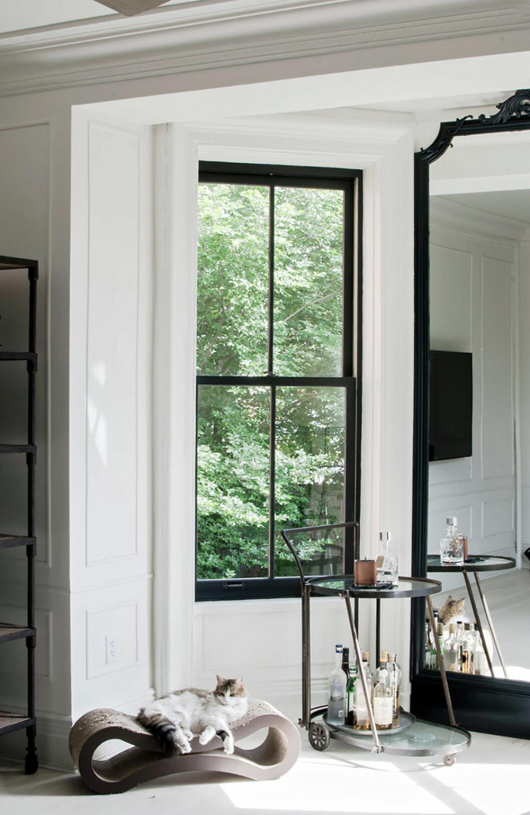 Fönster med svart ram