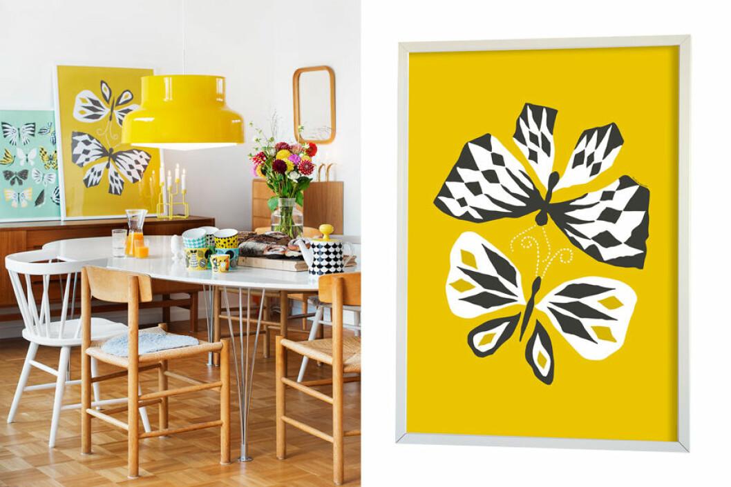 Poster med fjärilsmotiv och gul bakgrund.