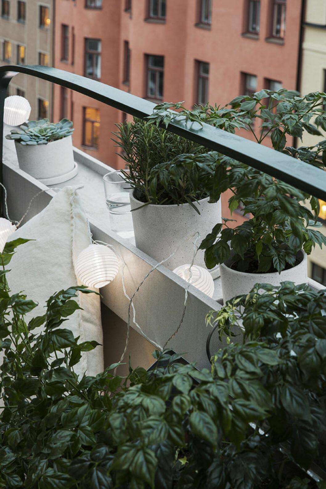Balkongmöbler och balkongväxter, ljusslinga, Granit våren 2018.