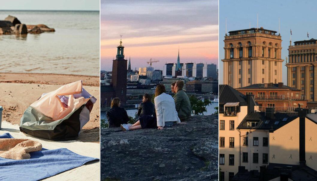 7 fina picknickplatser i Stockholm