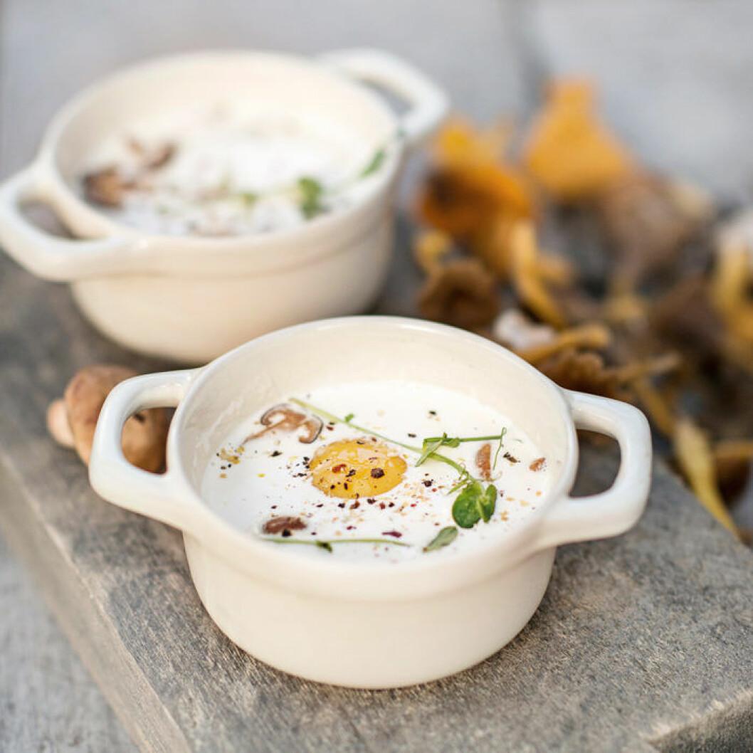 Krämig äggcocotte med stekt svamp.