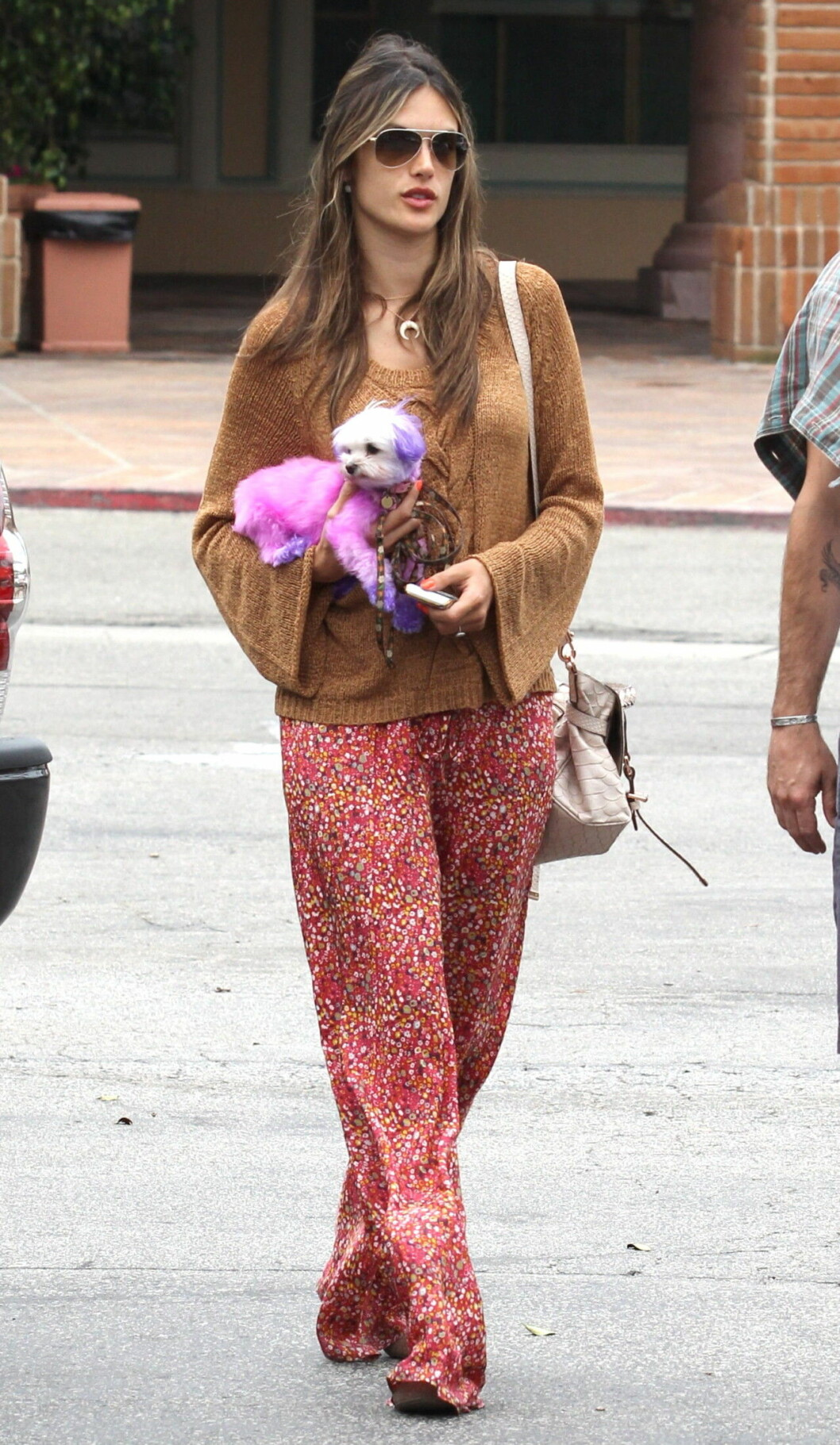 Alessandra Ambrosio med hunden som hon färgade pälsen på 2012.