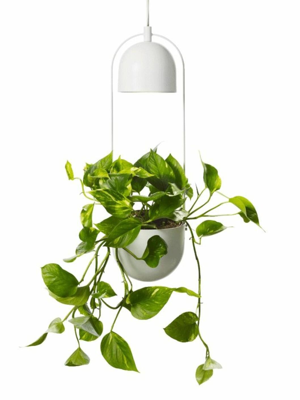 Alora hanging pot är perfekt för den som vill visa upp sina växter på ett nytt sätt