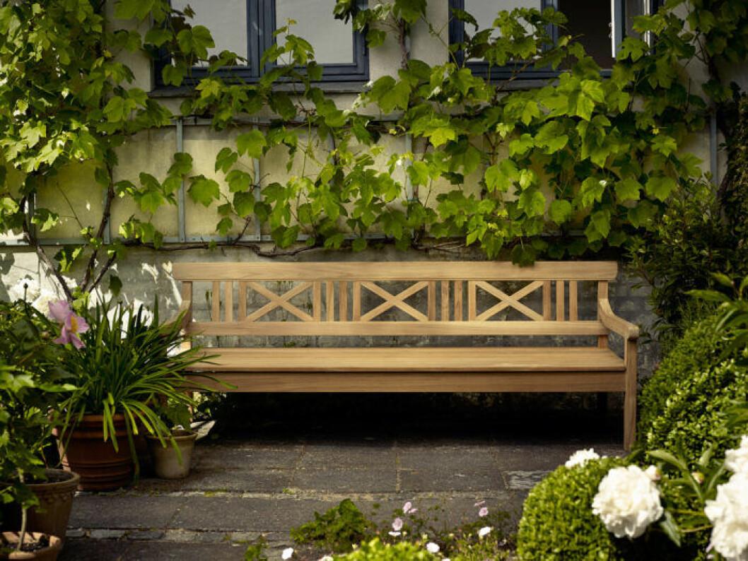 Välj växter som passar dig och din balkong.