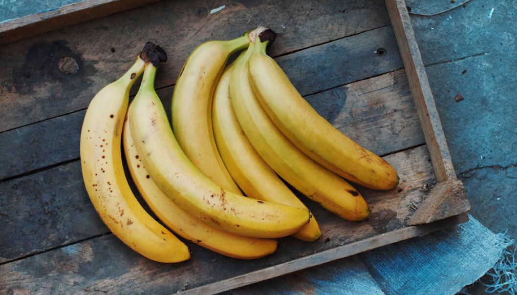 Håll bananerna gula längre med enkla knep!