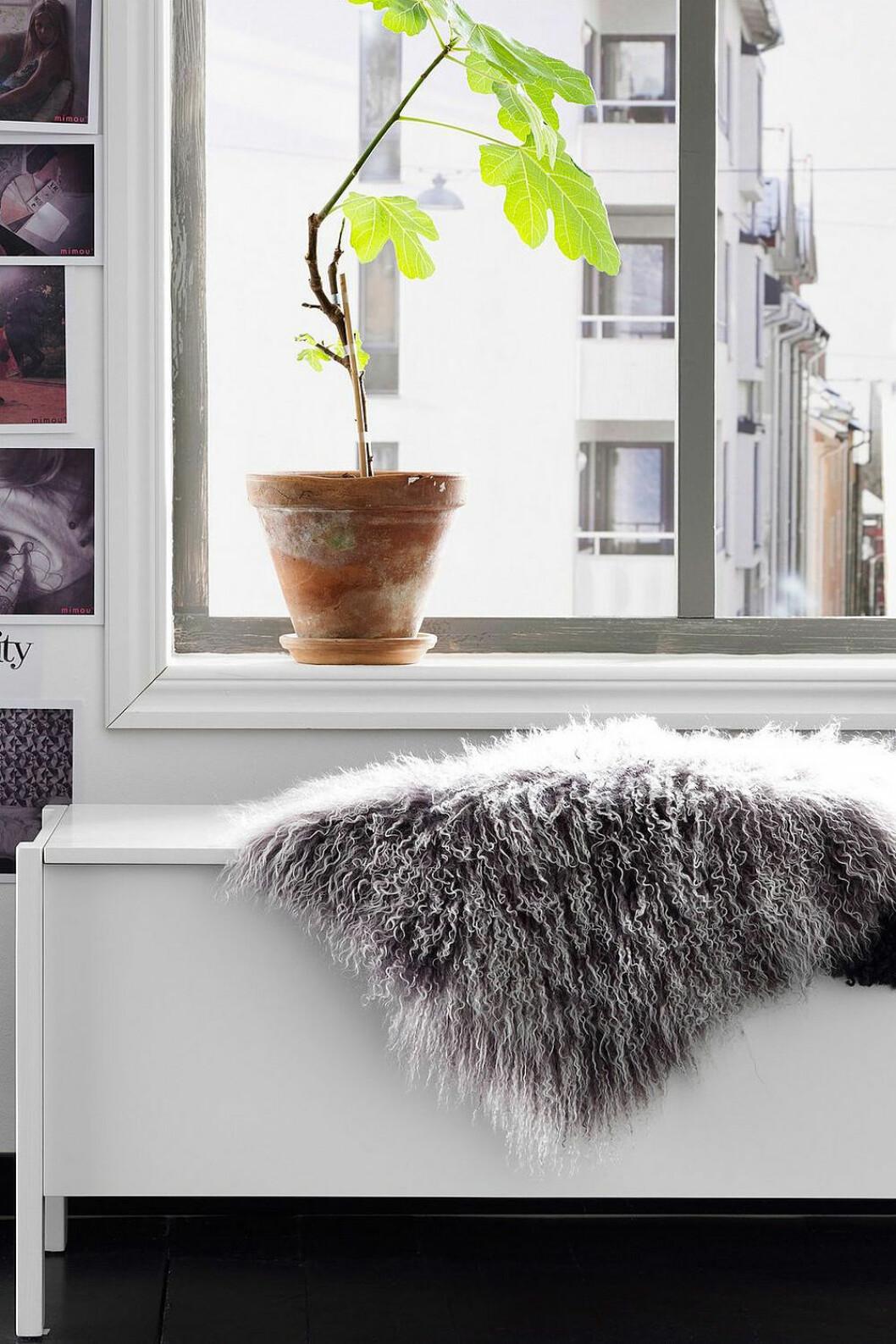 Bänk med förvaring som är compact living-smart i hallen