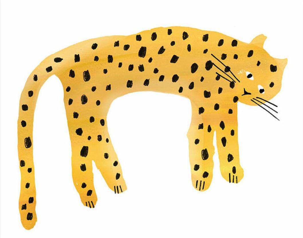 Poster till barnrummet med leopard från Lagerhaus