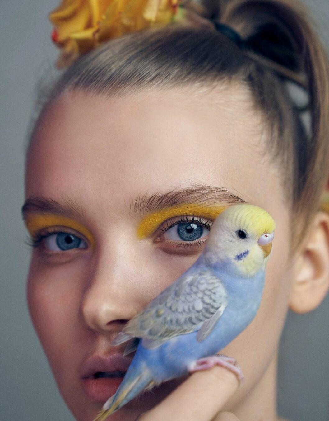 Färgstarkt ögonsmink är en beautytrend våren 2020