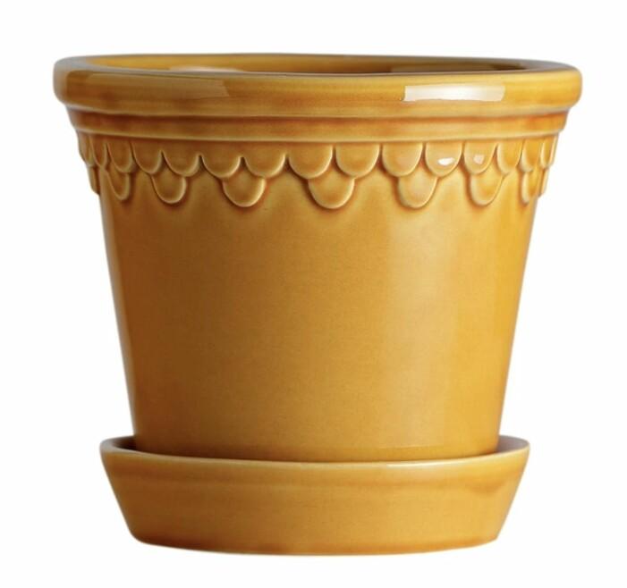 Berghs Potter
