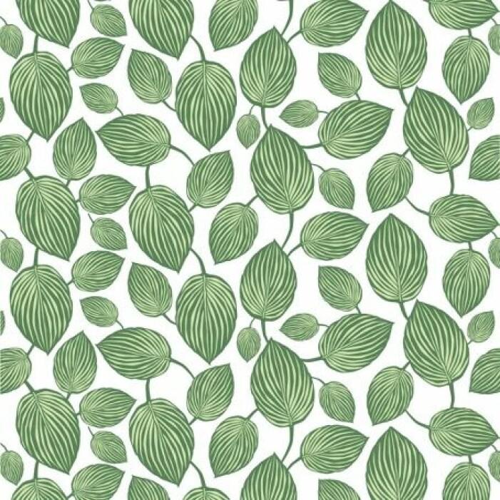 grön vaxduk med blad